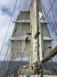 Lady of Avenel - work on a tall ship