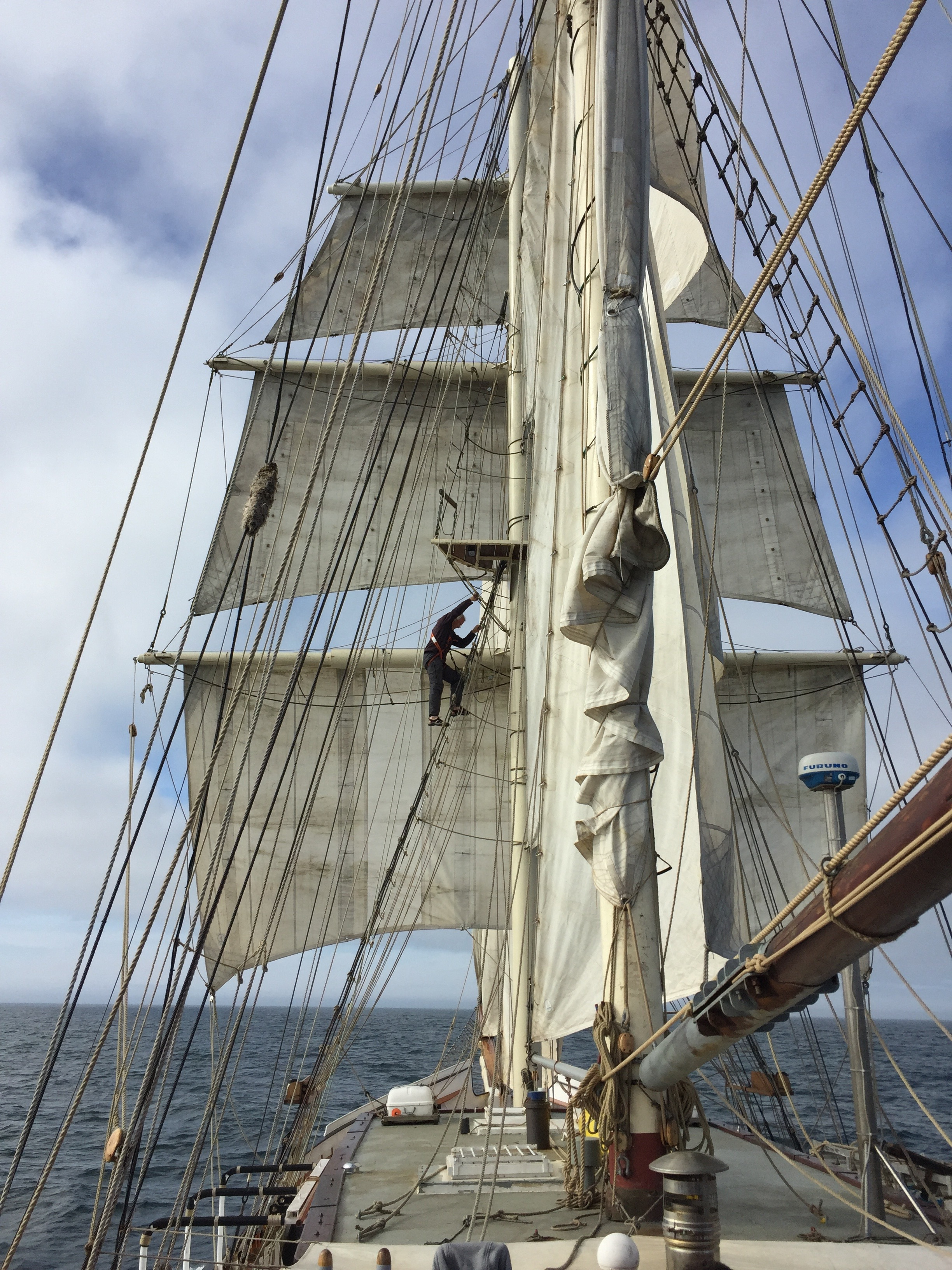 Want to work on a Tall Ship? You'll need these